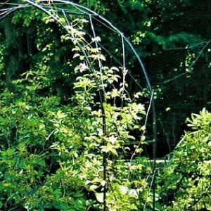 Oregon Metal Garden Arch - Hardstanding