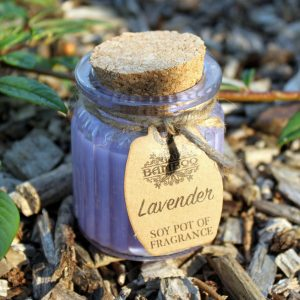 Soy Candles - Set of Two Lavender Fragrance Pots