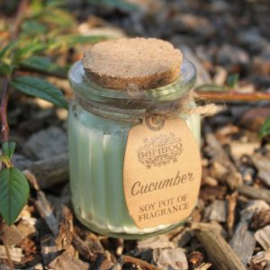 Natural Candles - Cucumber Soy Pots of Fragrance