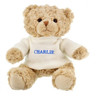 Teddy Bear Personalised with Name in Blue