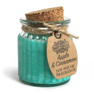 Scented Candle Sets - Apple & Cinnamon Soy Fragrance Pots