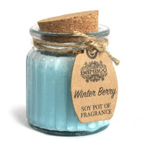 Winter Berry Soy Pot of Fragrance - Set of Two